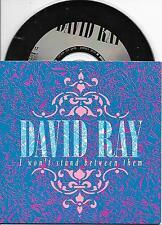 DAVID RAY - I won't stand between them CD SINGLE 2TR (PETER KOELEWIJN) 1991 RARE