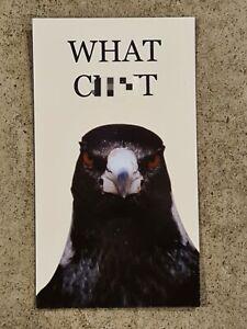 Magpie Swoop Fridge Magnet, Bird, Swoopy Boiz