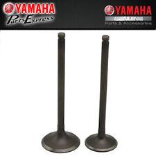 Exhaust Valve Yamaha Badger 80 1992-2001 22K-12121-02-00