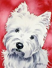 WEST HIGHLAND TERRIER Dog 13 X 17 LARGE ART Print by DJ Rogers w/COA