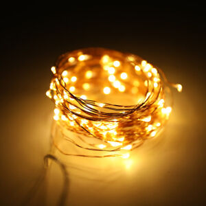 10M 100LED Copper Wire RGB Fairy String Light With Remote Control Xmas Party