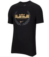 Nike Dri-Fit Lebron James Logo Tee Mens Basketball T-Shirt Black Multi Size Top
