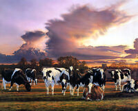 HD Print Oil painting Picture Animals Cows in the pasture on canvas L328