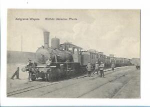XX14112/ Zollgrenze Woyens Eisenbahn Einführ dänischer Pferde 1916 AK  Dänemark