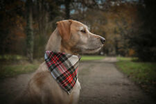 Pet Pooch Boutique Alfies Plaid Bandana for Dog Medium/large Red