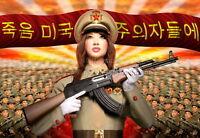 "North KOREA Anti-American Propaganda Military Poster On Canvas Print 8x10/"" #081"