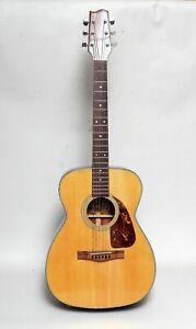Fender Model F-200 akustik Gitarre mit Hartschalenkoffer