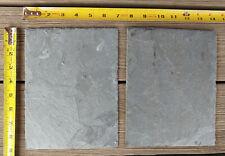 (2) PIECE SET Tortoise Reptile Feeding Basking Slates REAL Stone - FREE SHIPPING