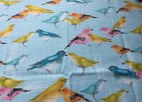RPA246E Birds Finches Sparrows Laura Gunn Birdies Spring Cotton Quilting Fabric