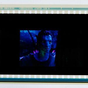 Avatar IMAX 15/70mm film cell