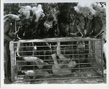 Johnny Weissmuller as Tarzan imprisoned in cage whilst tribes men surround him
