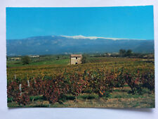 Le Mont-Ventoux Vintage colour Postcard c1960s Vineyards