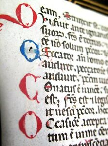c1450 ILLUMINATED Medieval BREVIARY Book Hours MANUSCRIPT Vellum LEAF Bible
