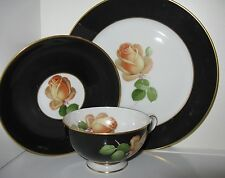 Thomas Bavarian Black Band Yellow Rose Gold Trim TRIO Cup Saucer Plate