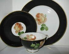 Thomas Bavarian Black Band Yellow Rose Gold Trim TRIO Cup Saucer Plate