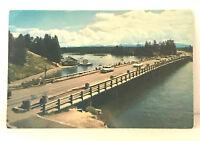 Vintage Fishing Bridge Yellowstone National Park Postcard