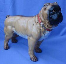 "ANTIQUE VICTORIAN PUG BULL MASTIFF STANDING DOG GERMANY 10"""