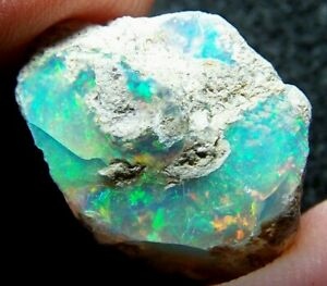 Ethiopian Opal Welo Rough * SEE VIDEO 12.73 CTs Bright 5/5 PIN Fire USA DEALER
