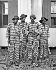 Photograph Vintage Southern Chain Gang Convict Members  1905c   11x14
