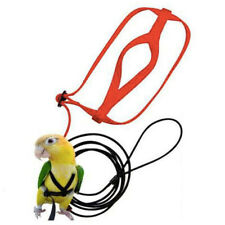 Parrot Bird Leash Outdoor Harness Training Rope Anti Bite Flying Band J