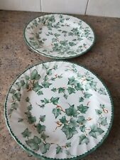 BHS Country Vine Dinner Plates x 2 ( 26 cm  )