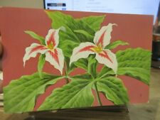 Other Old Postcard Victorian Random Painted Trillium Flower Peterson 1957 Summer