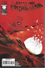 Amazing Spider Man #620 Regular Cover
