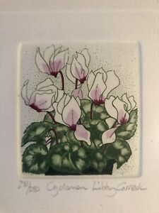 Libby Carreck Signed & Framed Etching - Botanical Artist / Greenwich - Cyclamen