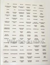 108 transparente Gewürzetiketten, Etiketten, Gewürze, Aufkleber, Gewürzaufkleber