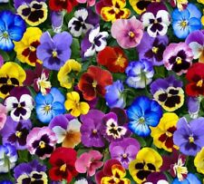 Lovely Pansies Packed Floral Multi Elizabeth's 100% cotton fabric by the yard