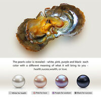 1/5/pcs Lots Wrapped Oysters with Pearls DIY Pendant Necklace Jewelry Gift