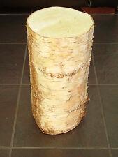 """Silver Birch Bark Bois Log décoratif Log pièce maîtresse section .16 """"de hauteur. 6-7"""" Dia"""
