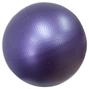 Workoutz 9-Inch Mini Yoga Ball For Pilates Soft Pliable Inner Thigh