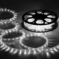 DELight® 50' Cool White LED Rope Light 2 Wire 110V Home Outdoor Party Lighting