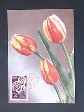 RUSSIA MK 1965 FLORA BLUMEN TULPE TULIP MAXIMUMKARTE MAXIMUM CARD MC CM d2866