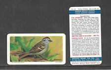 Type Cards: Brooke Bond USA ( blue back) CAN/AM SONGBIRDS EX cond.