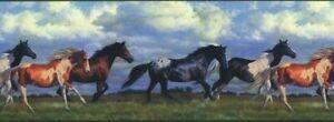 "HORSES RUNNING FREE York Wallpaper Border 10"" x 5 Yard Spool NV9448B Made in USA"