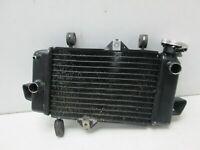 Wasserkühler Kühler Radiator WATER COOLER Yamaha YZF-R 125 RE06 08-13
