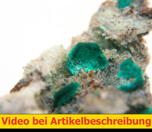 5509 Chalkophyllit chalcophyllite  ca 3*1,5*1,5 cm Gengma  China 2014 MOVIE