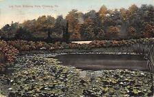 Pittsburg Pennsylvania~Schenley Park Lily Pond~1908 Postcard