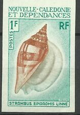 Nouvelle Caledonie Coquillages Strombus Shell Muscheln Non Dentele Imperf **1970