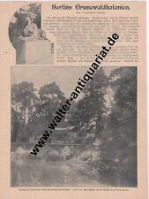 Berlin Grunewald 7-seitiger Zeitungsausschnitt von 1904 Villen-Kolonie
