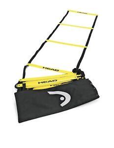 Head Agility Training Ladder