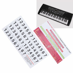 Piano Keyboard Stickers Piano Scale Staff Decals for Piano Beginner/Piano Lovers