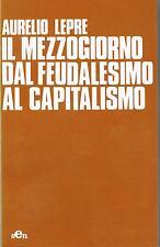 Aurelio Lepre IL MEZZOGIORNO DAL FEUDALESIMO AL CAPITALISMO ed.sen 1979