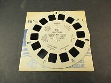 Sawyer's Viewmaster Reel, California Wild Flowers USA Baby Blue Eyes Lupine