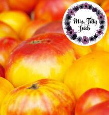 Old German Alte Deutsche Tomatensamen10 Samen Tomate lecker robust bunte Sorte