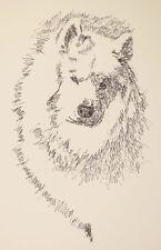 SAMOYED DOG ART PORTRAIT PRINT #78 Stephen Kline will add your dogs name free.