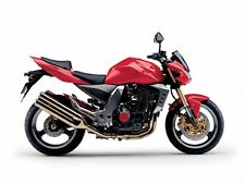 KAWASAKI TOUCH UP PAINT 2004 Z1000 PASSION RED