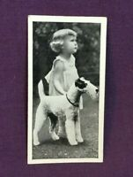 *Advertising Tobacco Dog Card CARRERAS CIGARETTES Wire Haired Terrier